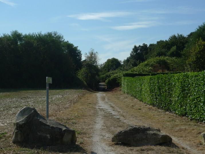 Abords-terrain-21-716x537